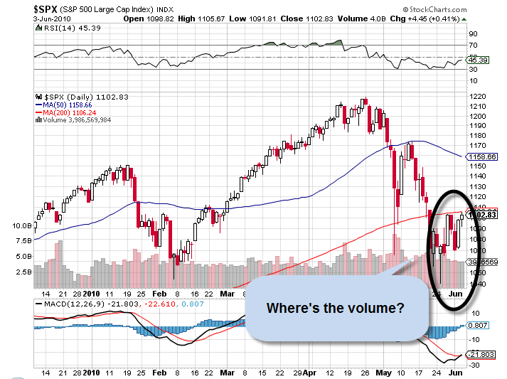 S&P 500 Volume June 2010